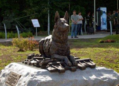 Памятник фронтовой собаке