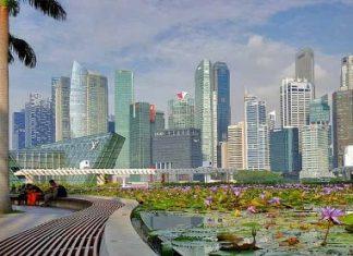 kak-sekonomit-v-singapure
