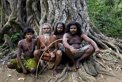 племя Веддов